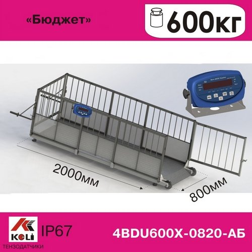 Scales for weighing animals 4ВDU 600X Budget