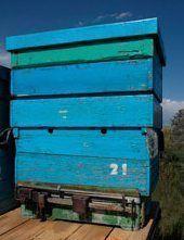 Весы для пчеловода